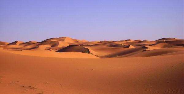 Viaje desierto Tanezrouft